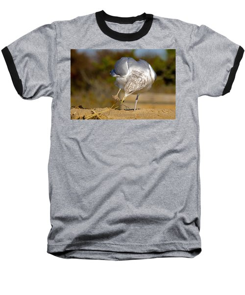 What Did I Just Step In? Baseball T-Shirt