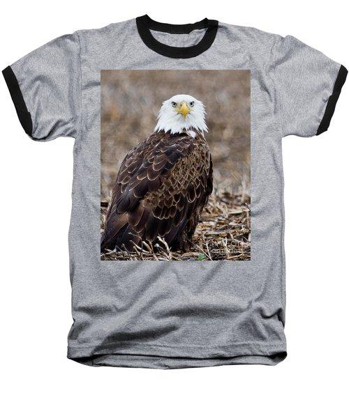 What Baseball T-Shirt