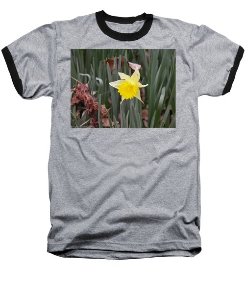 Baseball T-Shirt featuring the photograph Whats Up Buttercup by Nick Kirby