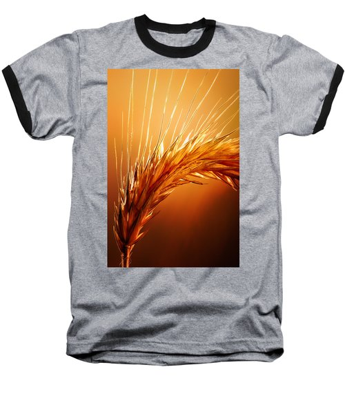 Wheat Close-up Baseball T-Shirt by Johan Swanepoel