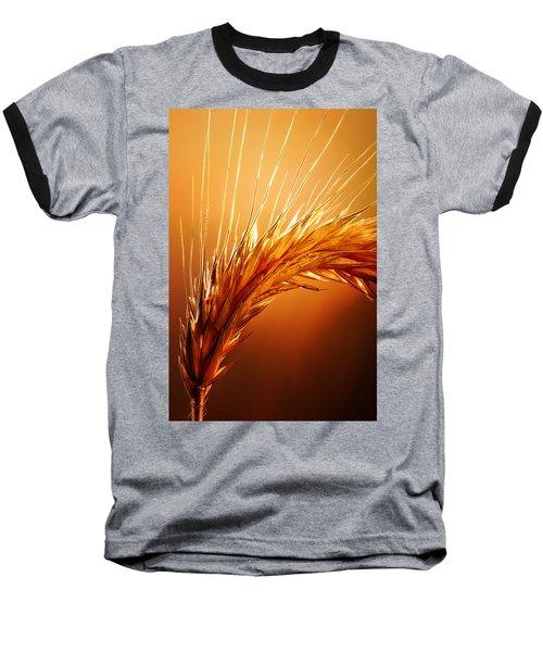 Wheat Close-up Baseball T-Shirt