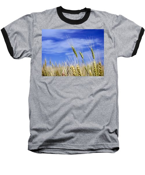 Baseball T-Shirt featuring the photograph Wheat Trio by Keith Armstrong