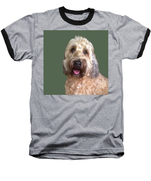 Wheaton Terrier Baseball T-Shirt