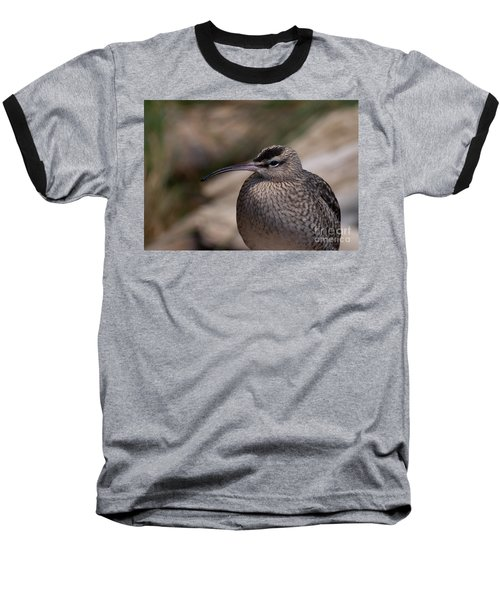 Baseball T-Shirt featuring the photograph Whimbrel by Bianca Nadeau