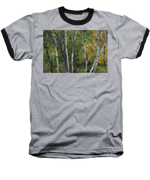 White Birches In The Woods Baseball T-Shirt by Denyse Duhaime