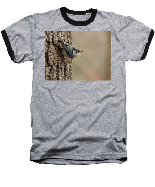 White-breasted Nuthatch Baseball T-Shirt