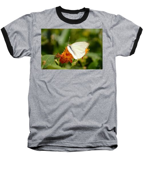 Baseball T-Shirt featuring the photograph White Butterfly On Mexican Flame by Debra Martz