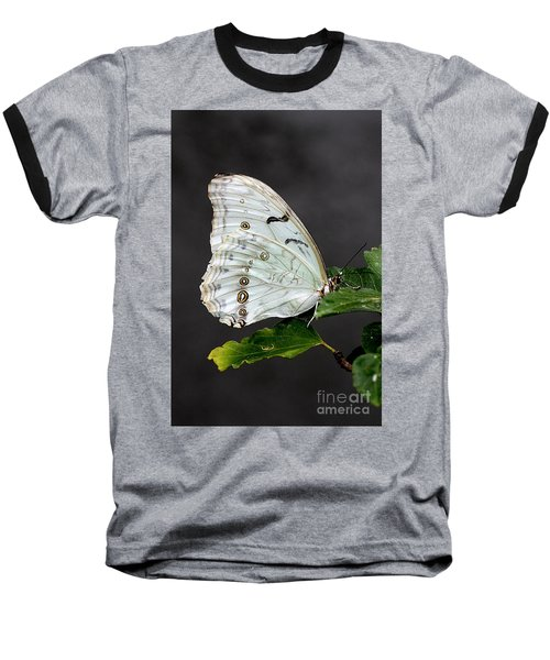 White Butterfly Baseball T-Shirt