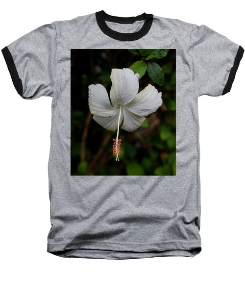 White Hibiscus Baseball T-Shirt by Pamela Walton