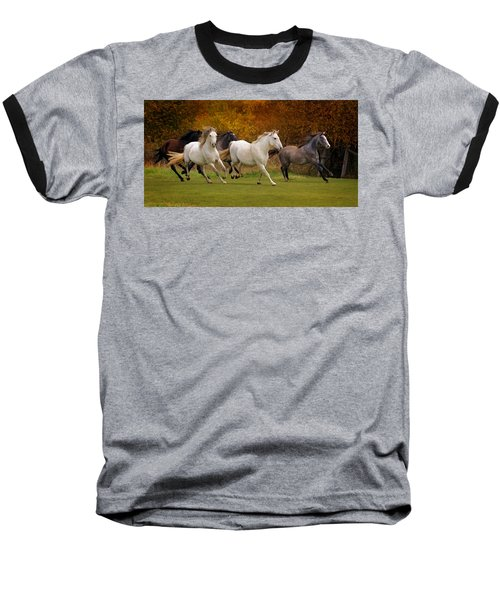 White Horse Vale Lipizzans Baseball T-Shirt