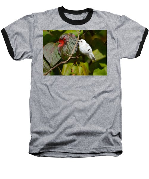 White Hummingbird Baseball T-Shirt