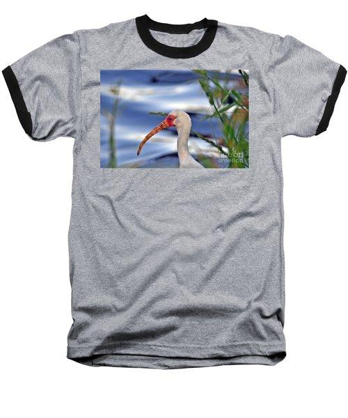Intriguing Ibis Baseball T-Shirt