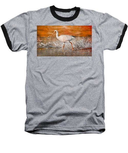White Ibis Stroll Baseball T-Shirt