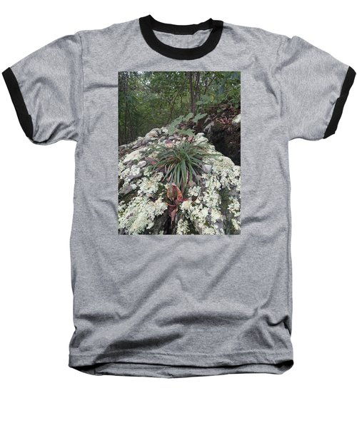 Baseball T-Shirt featuring the photograph White Lichen by Robert Nickologianis