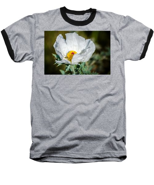 White Prickly Poppy Wildflower Baseball T-Shirt by Debra Martz