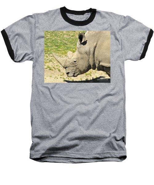 White Rhinoceros Portrait Baseball T-Shirt by CML Brown