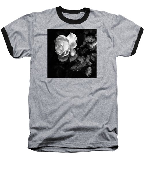 White Rose Full Bloom Baseball T-Shirt