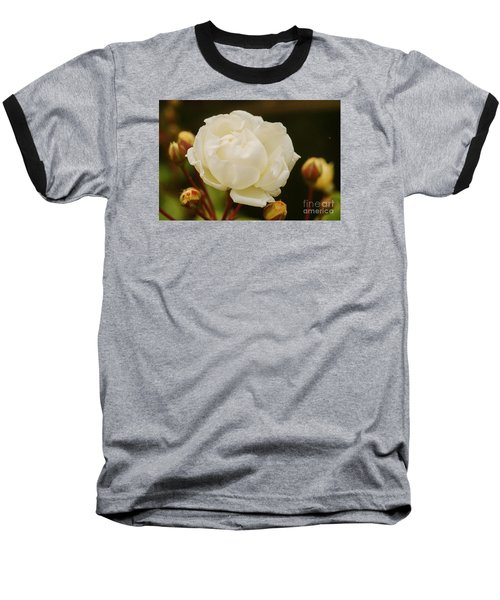 Baseball T-Shirt featuring the photograph White Rose 1 by Rudi Prott