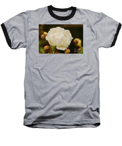 White Rose 1 Baseball T-Shirt by Rudi Prott