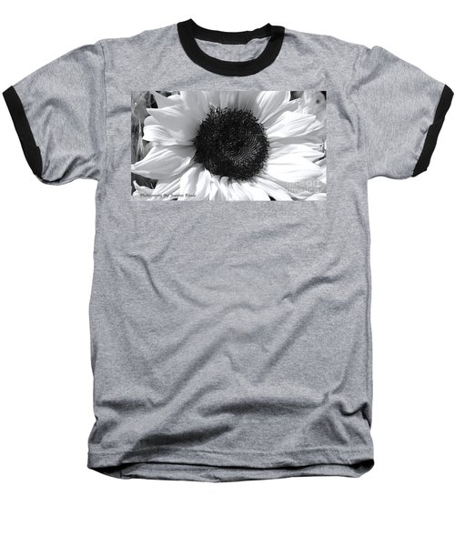 Baseball T-Shirt featuring the photograph White Sunflower by Jeannie Rhode