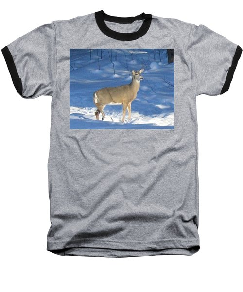 Baseball T-Shirt featuring the photograph White Tail Deer by Brenda Brown