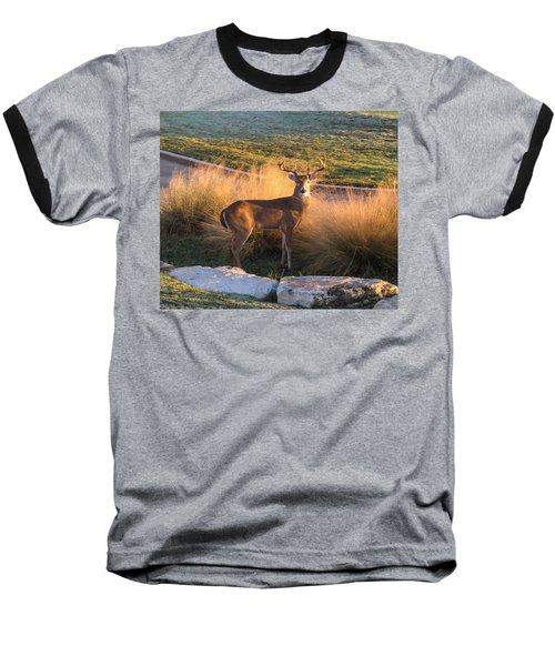 White Tail Baseball T-Shirt
