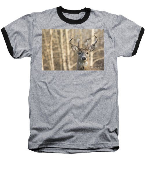 White-tailed Buck Baseball T-Shirt