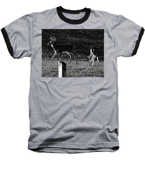 White Tailed Deer Baseball T-Shirt