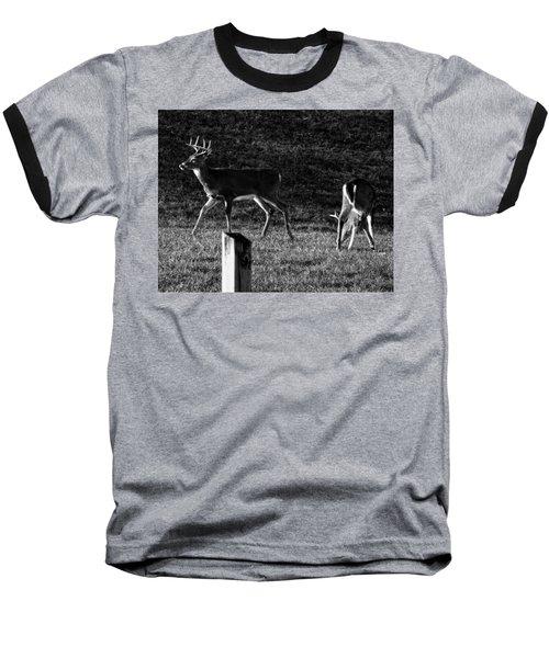 White Tailed Deer Baseball T-Shirt by Chris Flees