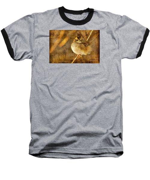 White Throated Sparrow Baseball T-Shirt