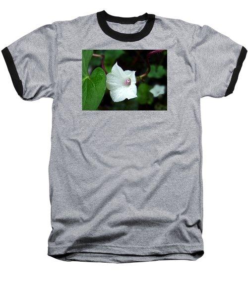 Wild Whitestar Morning Glory Baseball T-Shirt by William Tanneberger