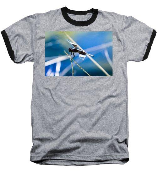 Widow Skimmer Baseball T-Shirt