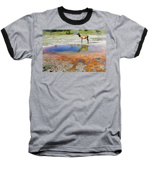 Baseball T-Shirt featuring the photograph Wild And Free In Yellowstone by Teresa Zieba