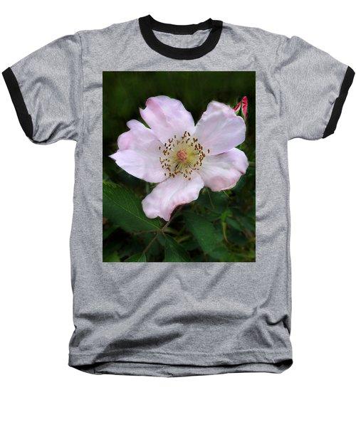 Wild Carolina Rose Baseball T-Shirt