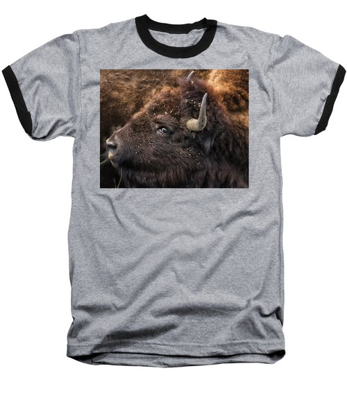 Wild Eye - Bison - Yellowstone Baseball T-Shirt