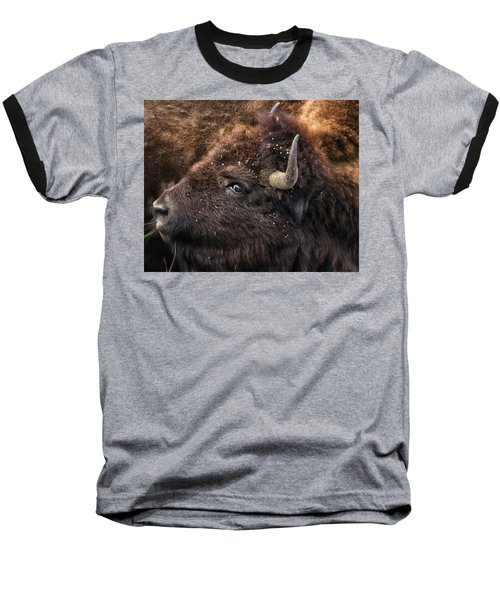 Baseball T-Shirt featuring the photograph Wild Eye - Bison - Yellowstone by Belinda Greb