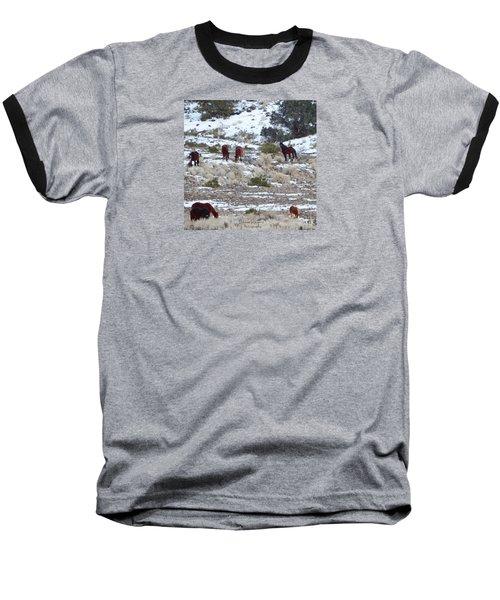 Wild Mustangs In A Nevada Winter Baseball T-Shirt by Bobbee Rickard