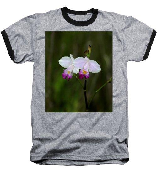 Wild Orchid Baseball T-Shirt by Pamela Walton