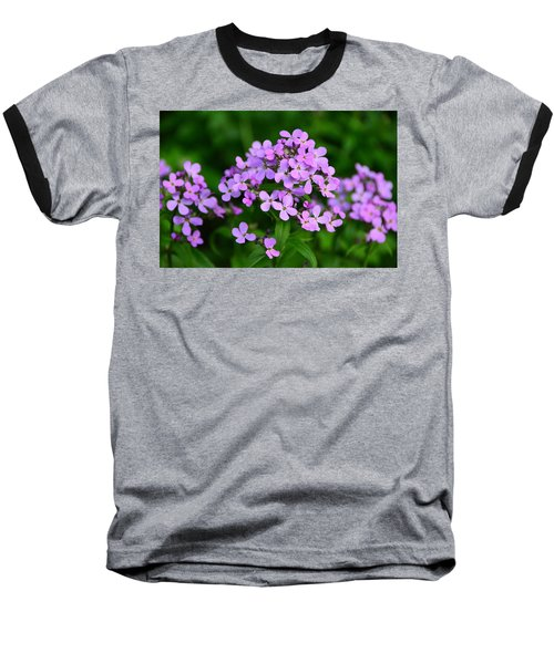 Wild Phlox Baseball T-Shirt by Debra Martz