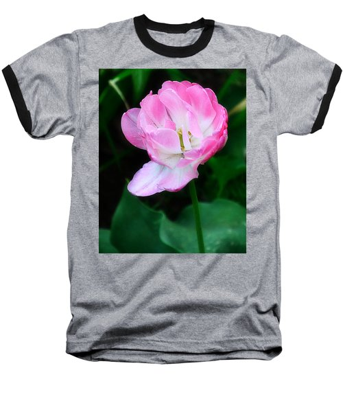 Wild Pink Rose Baseball T-Shirt
