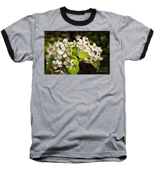 Wild Plum Blossoms Baseball T-Shirt by Ella Kaye Dickey