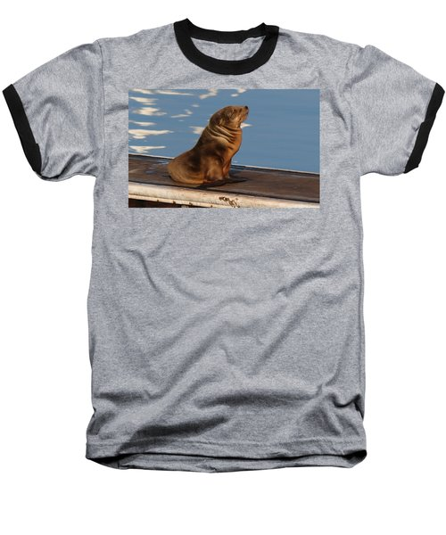 Wild Pup Sun Bathing - 2 Baseball T-Shirt
