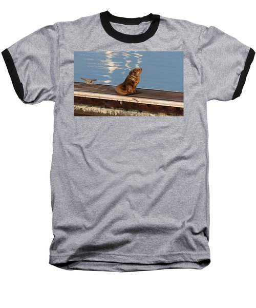 Wild Pup Sun Bathing Baseball T-Shirt