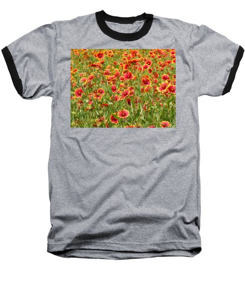 Baseball T-Shirt featuring the photograph Wild Red Daisies #1 by Robert ONeil