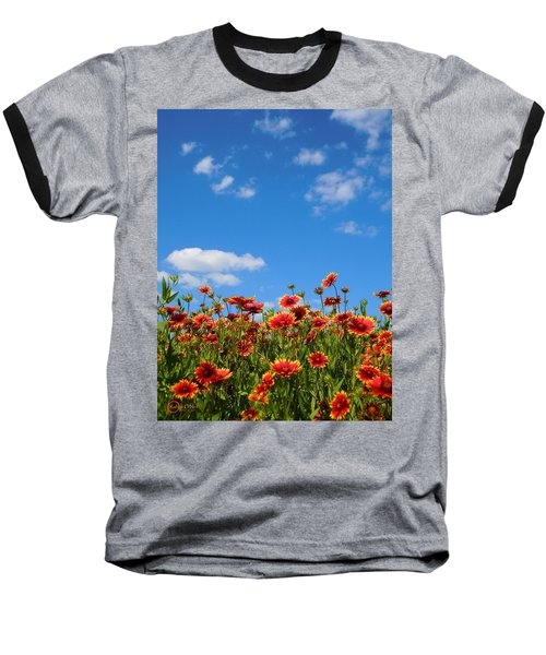 Baseball T-Shirt featuring the photograph Wild Red Daisies #6 by Robert ONeil