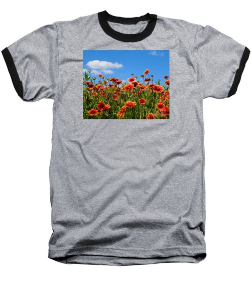 Baseball T-Shirt featuring the photograph Wild Red Daisies #7 by Robert ONeil