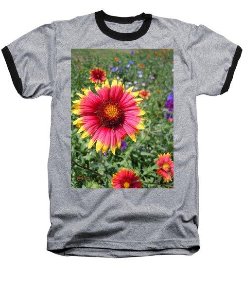 Baseball T-Shirt featuring the photograph Wild Red Daisy #1 by Robert ONeil