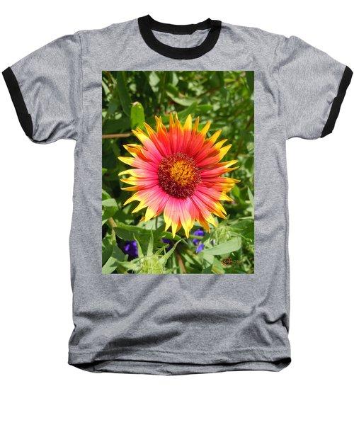 Baseball T-Shirt featuring the photograph Wild Red Daisy #3 by Robert ONeil