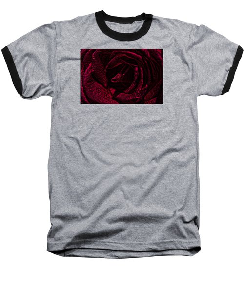 Wild Rose Baseball T-Shirt by Kathy Churchman