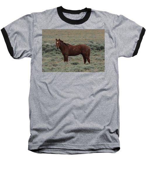 Wild Scars Baseball T-Shirt